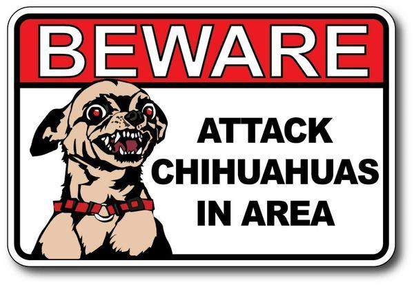 Beware Attack Chihuahuas In Area Decal Sticker Vinyl Joke Funny Dog Humor Pet 1