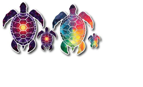Sea Turtle Combo Pack Decal Vinyl Sticker Beach Ocean Design Printed on Sleek 3M Bubble Free Vinyl