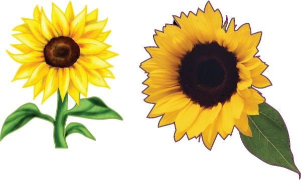 6 pack of flower decals sunflowe art sticker for car truck SUV vehicle tumbler cup mug