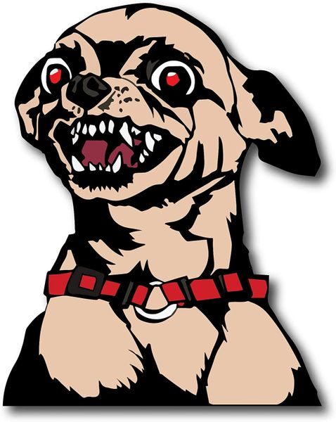 Angry Chihuahua Peel and Stick Adhesive Funny Decal Window Sticker
