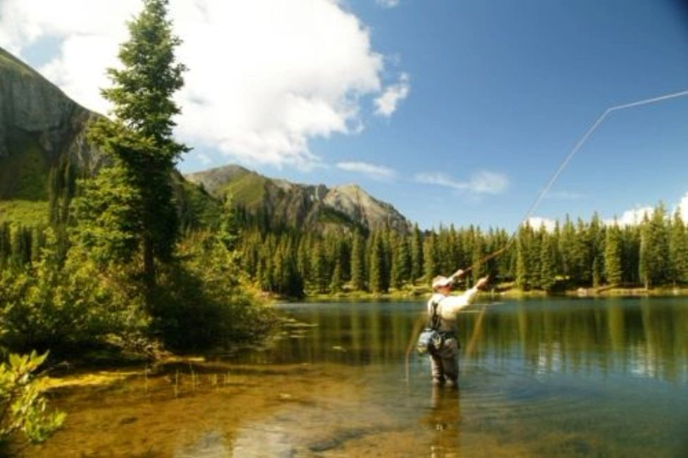 Fly Fishing on Grand Mesa. Visit Grand Junction