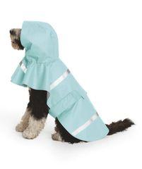 New Englander® Doggie Rain Jacket CSNE
