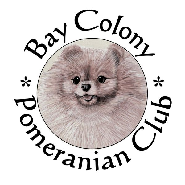 Bay Colony Pomeranian Club