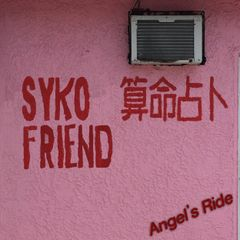 Syko friend: Angel's Ride LP (Dove Cove)