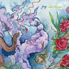 Joy - Shallows CD