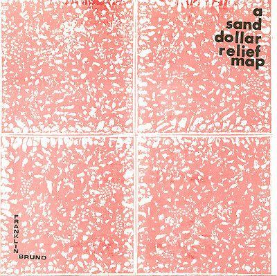 "Franklin Bruno - A Sand Dollar Relief Map 7"""