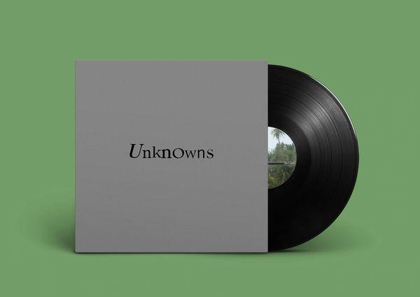 The Dead C: Unknowns LP