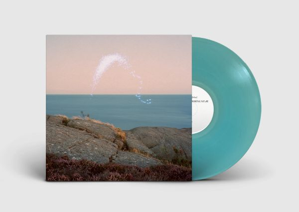 JENKINS, CASSANDRA: An Overview On Phenomenal Nature LP PRE-ORDER