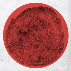 MONTGOMERY, ROY: Q - Transient Global Amnesia LP