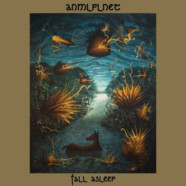 ANMLPLNET: Fall Asleep LP