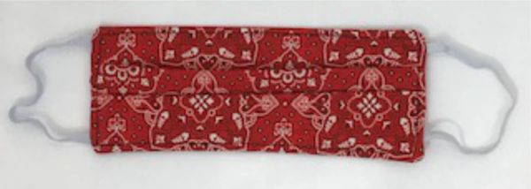 Red Bandana Kids Face Mask