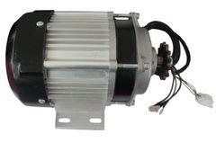 GoGoA1 48V/60V 500W-1000W E-Rickshaw Traction HUB Motor