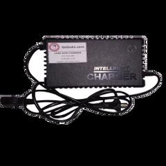 GoGoA1 48V 2.5A Lead Acid Battery Charger
