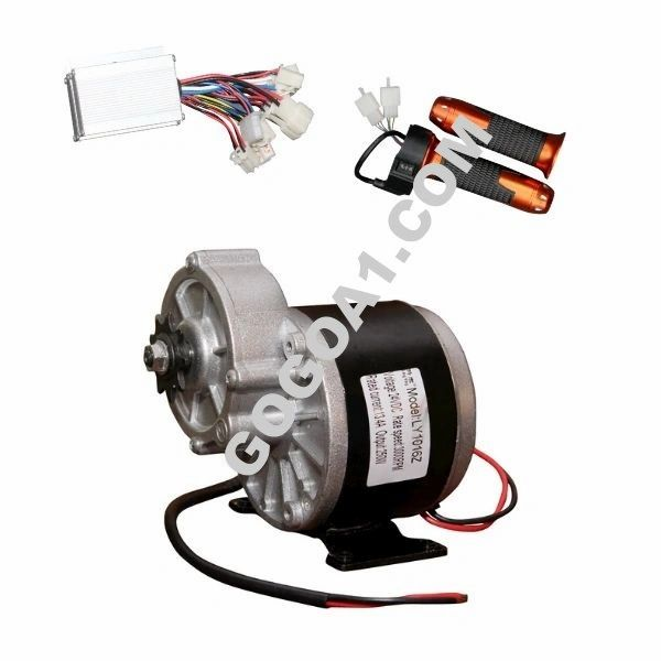 GoGoA1 24V 250W PMDC Electric Bicycle Motor Kit