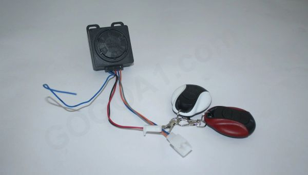 GOGOA1 Universal Anti-Theft (Type -2)