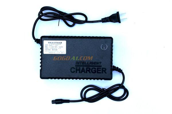 GoGoA1 12V 5A Lithium ion battery charger