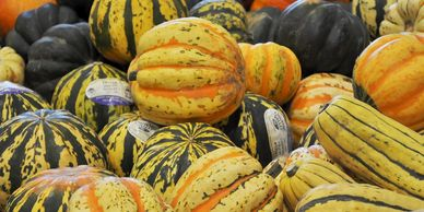 A wide selection of winter squash available at our farm stand, farmer's markets or via our pre-order