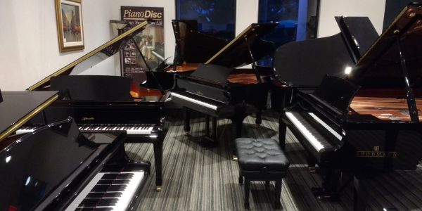 Steinway, Yamaha, and Kawai pianos on display at Nick's Piano Showroom in Naples, FL.