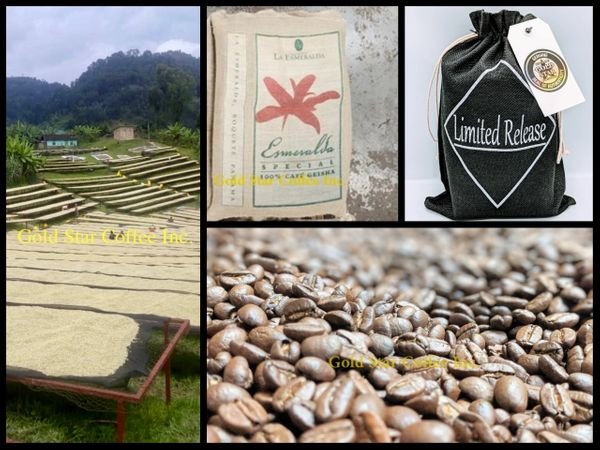 Panama Esmeralda Geisha - 2019 Limited Auction Lot - 2 x 1/2 lb Bag