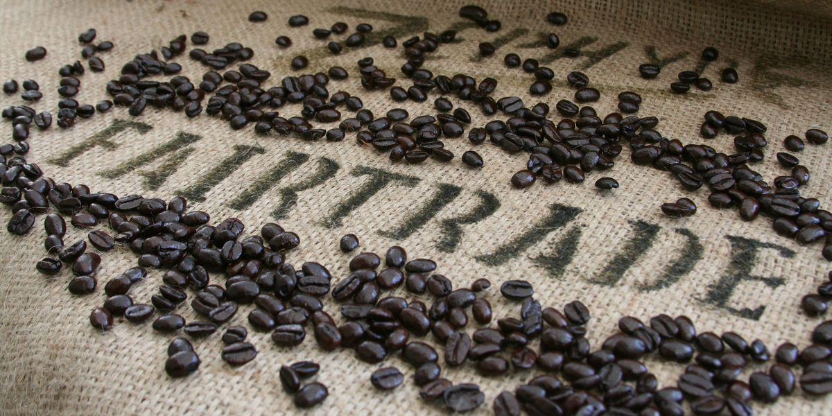 Best In The World Gold Star Coffee Toronto Canada Roasters