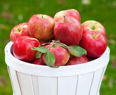 Honeycrisp Apple Glaze