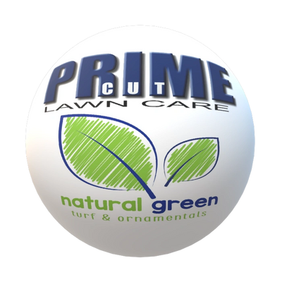 Prime Cut Lawn Care Natural Green Service is Organic fertilizer with a minimum of 50% of nutrients from organic and natural sources, with the other nutrients coming from synthetic sources Broadleaf and pre-emergent weed control that may be applied whenever the customer deems these custom lawn options are necessary Power Seeding Lawn (Core) Aeration Soil Enrichment pH Balance Adjustment (sulfur or lime applications) Natural Greens entire complement of custom organic lawn care services, including control of surface-feeding insects and other pests Tree and shrub care Ornamental bed weed control Lawn damaging disease and insect control
