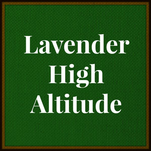 Lavender Essential Oil- High Altitude