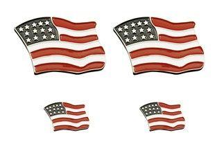 USA Flag Logos Pin Set