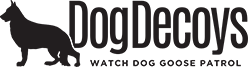 Watch Dog Goose Patrol