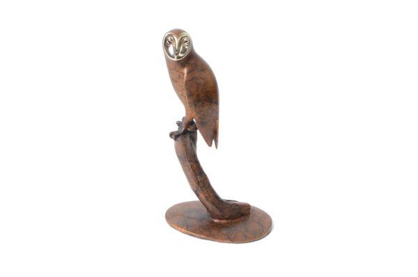 BA45 Small Barn Owl