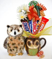 Owl Candy Bear Bouquet Osmond