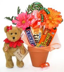 Candy Bear Bouquet Blossom Gardenbeary