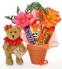 Candy Bear Bouquet Blossom Gardenbeary