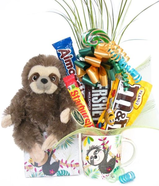 Sloth Candy Bear Bouquet Speedy Sloth