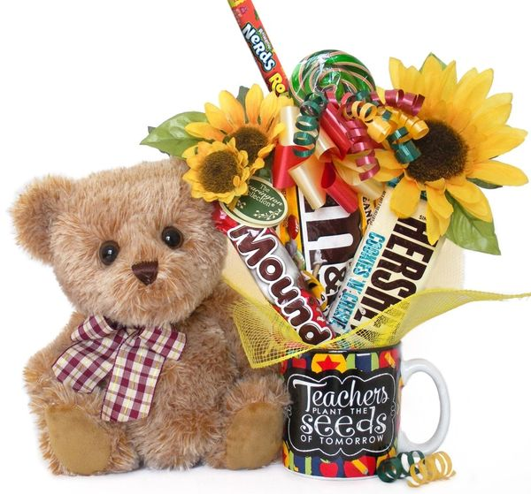 Teacher Candy Bear Bouquet Shaggy Bear w/ Teachers Plant the Seeds Mug