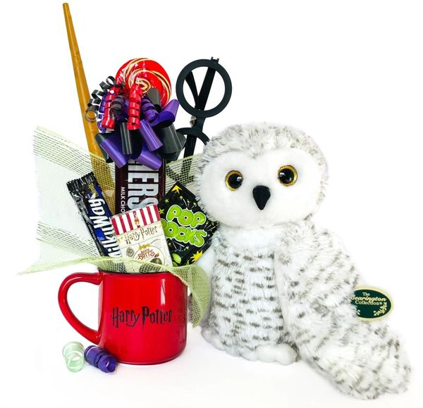 Harry Potter Candy Bear Bouquet Owlfred Snow Owl w/ Deathly Hallows Mug