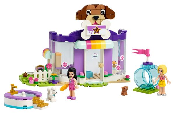 41691 Doggy Day Care