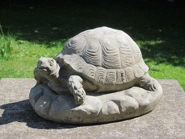 Tortoise Garden Statue Surrey Ornamental Stoneware