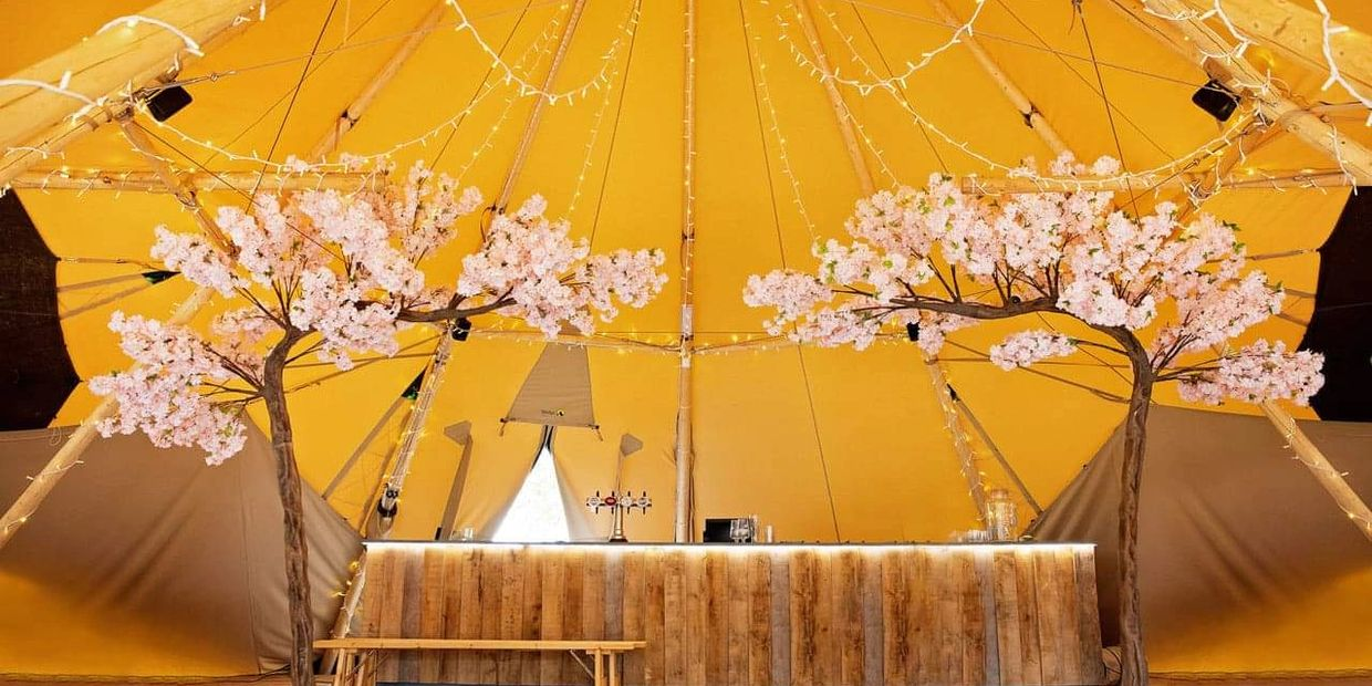 Make a statement at your event with our Beautiful Canopy Blossom Trees. Available in pink or Ivory.