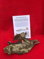 Red star insignia airframe panel,nice condition recovered from Russian il-2 Sturmovik ground attack aircraft shot down during the siege of Danzig in March 1945