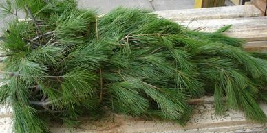white pine bales christmas Flower District NYC Wholesale Flowers Flower Supply Flower Market NYC