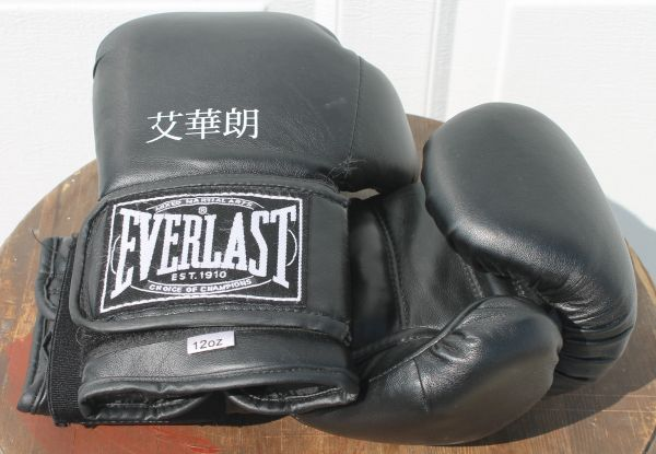 Everlast Boxing Gloves-12oz