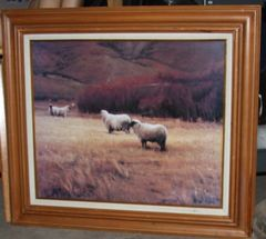 """Sheep Grazing in Field"" Framed Picture"