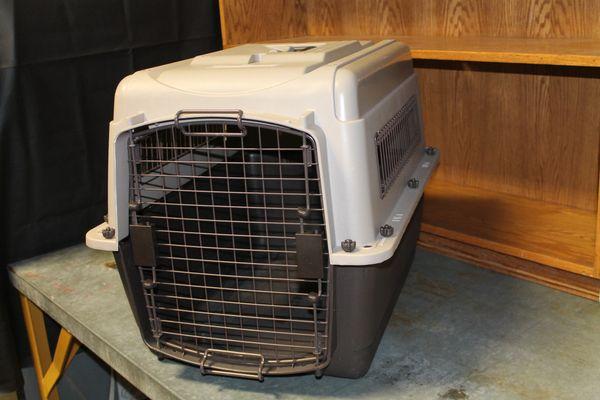 Medium Sized Animal Carrier/Kennel