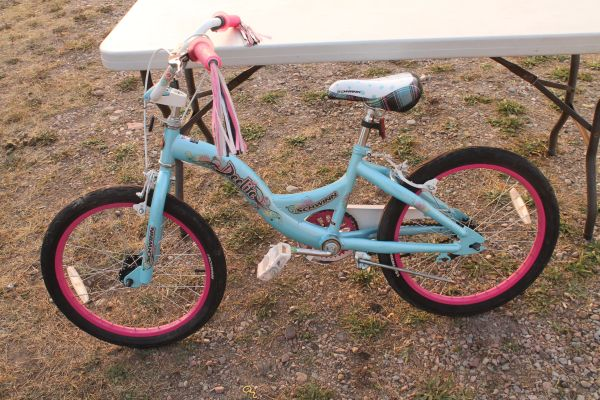 "Schwinn ""Delite"" 20"" Girls Bike"