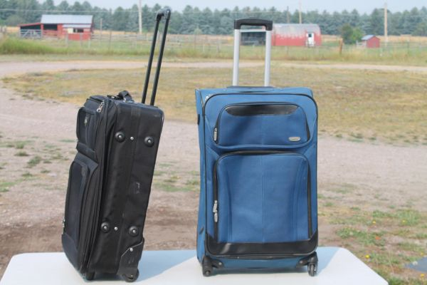 Travel Carry Cases With Pull Out Handles