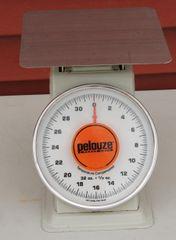 Pelouze Heavy Duty Platform Scale