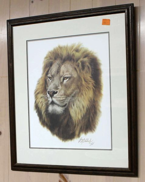 """African King"" Lion Framed & Signed Guy Coheleach"