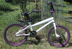 BCA FS Pro 20'' Youth Kids Trick Bike Bicycle