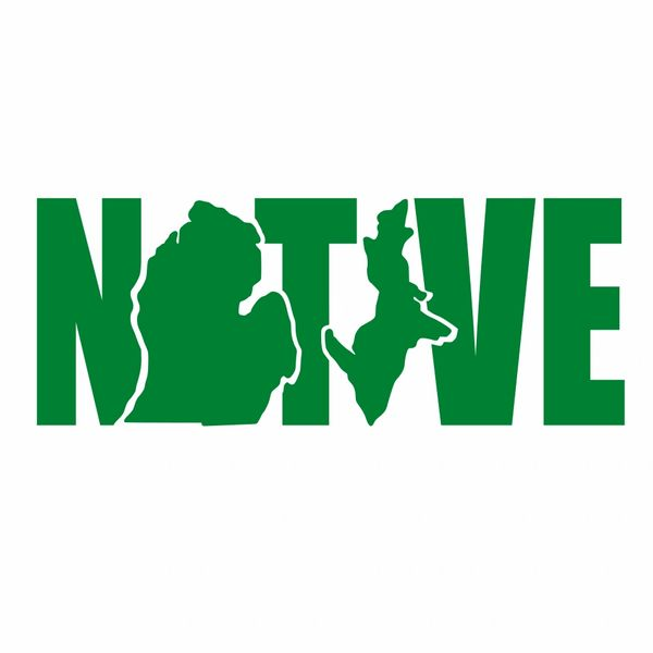 Native Michigan Decal - Native Decal - Michigan Native - Native